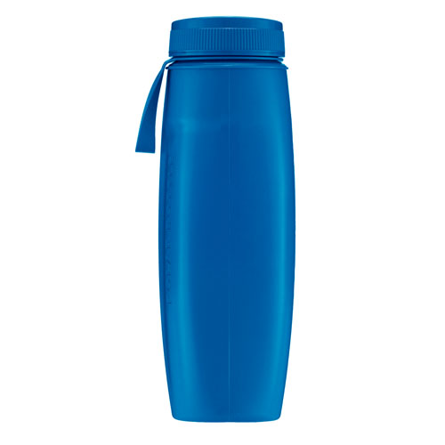 Ergo Color Sprectrum - Royal Polar Bottle